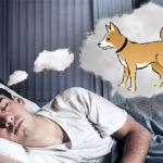 Rüyada köpek görmenin anlamları