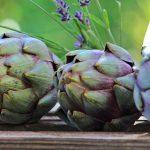 Yüksek lifli gıdaların etkili faydaları